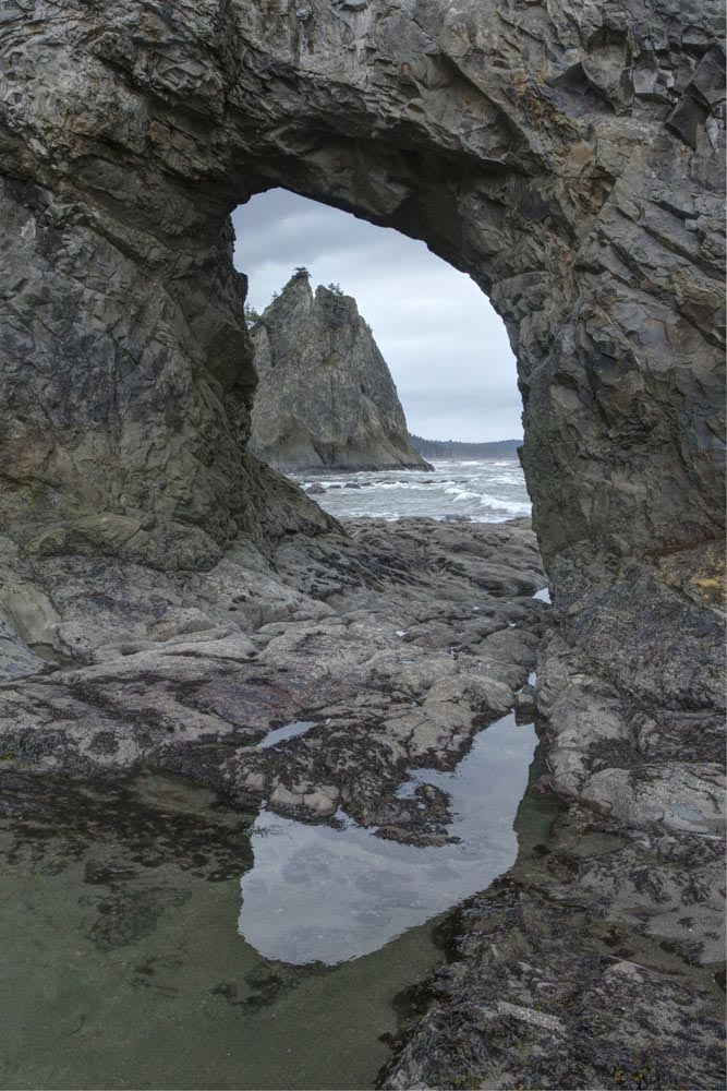 Sea stack and arch, WA (vertical) – Geology Pics